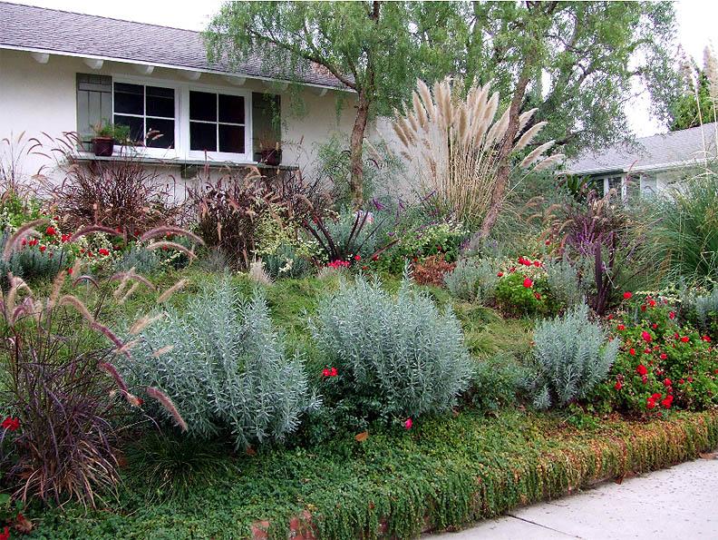 Water conservation groksurf 39 s san diego for Water saving garden designs