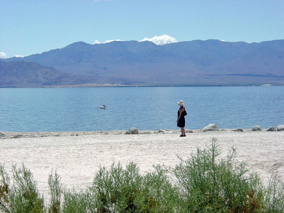 Standing on the east shore of the Salton Sea.