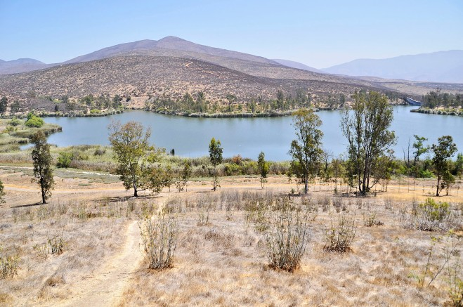 The City of San Diego's Upper Otay Reservoir was established in 1959 as a hatchery for the propagation and introduction of Florida-strain largemouth bass.  Today the reservoir offers 'catch-and-release' fishing for Florida-strain largemouth bass, bluegill, and bullhead.