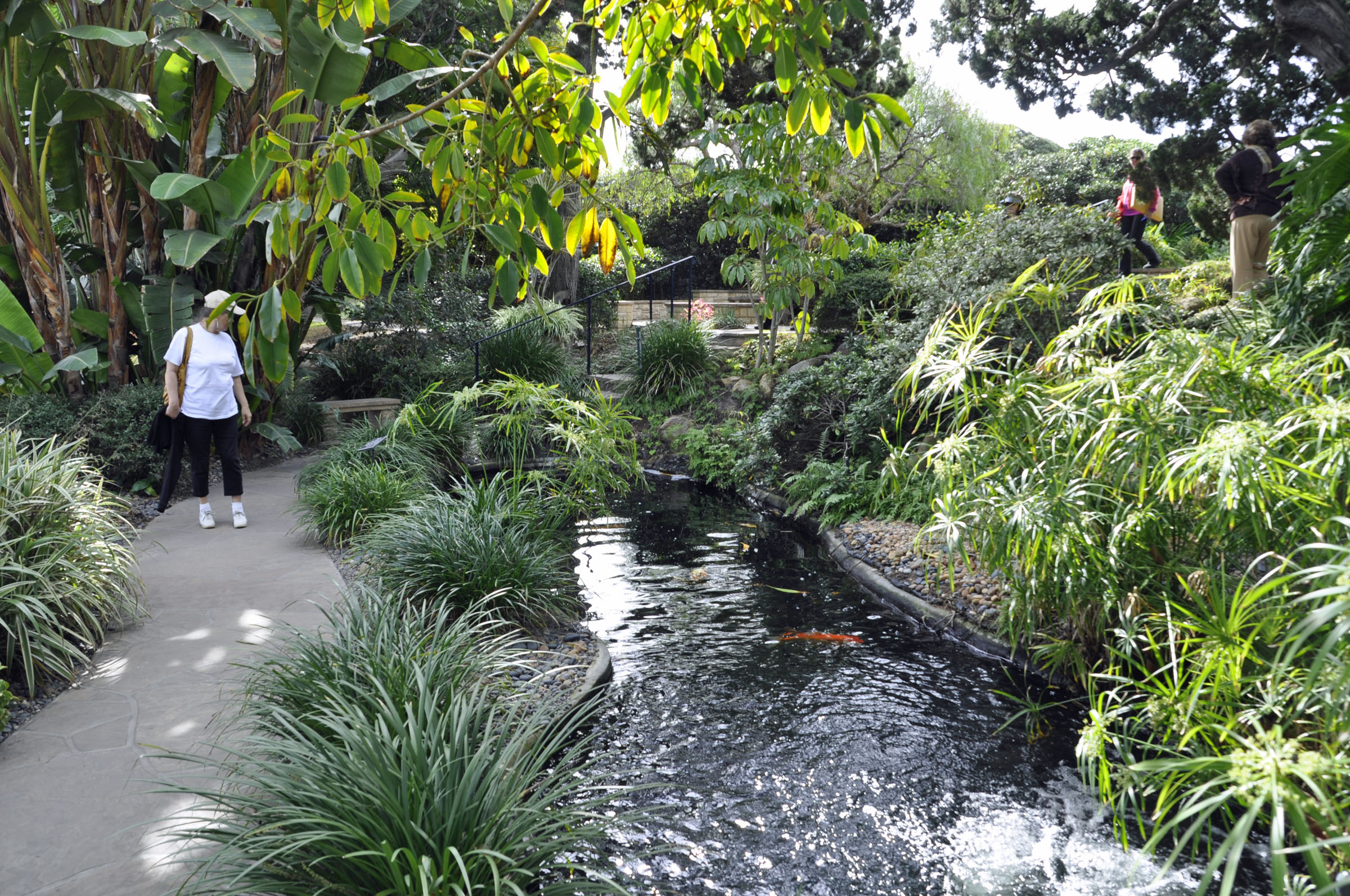 Self Realization Fellowship Meditation Gardens Encinitas